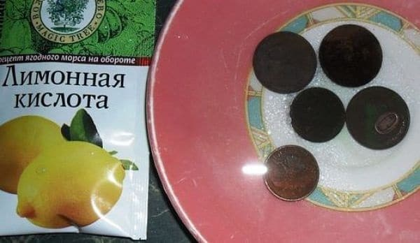CHistka-mednykh-monet-limonnoj-kislotoj-e1470840187928.jpg